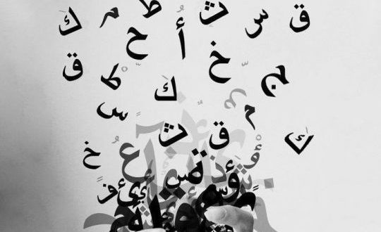 moustafamahmoud-540x360