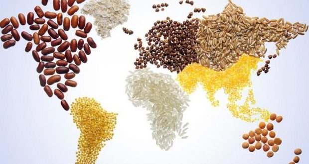 world-food-day-journee-mondiale-de-l-alimentation-660x330