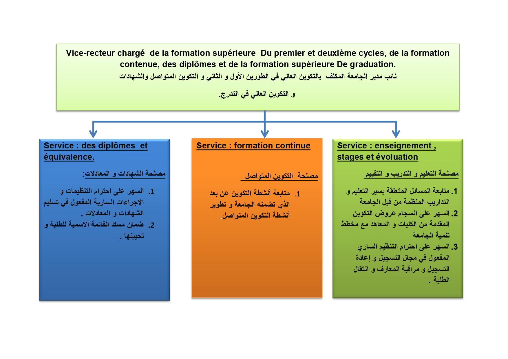 تخطيط نيابة الجامعة للبيداغوجية_page-0001